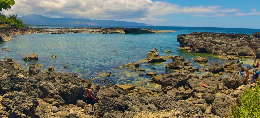 Snorkel at Shark's Cove